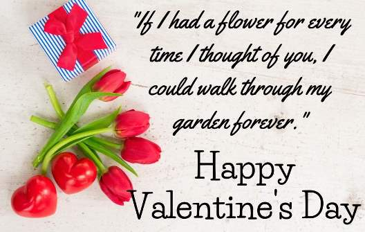valentine's day wishes for lovers