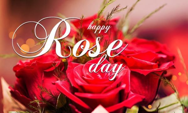 Happy Rose Day Date 2020 Images For Lovers Rose Day Kab Hai