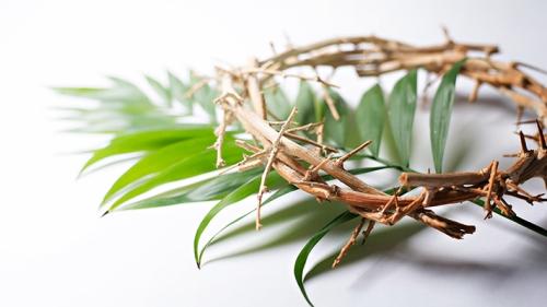 Happy Palm Sunday