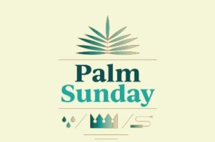 Pictures of palms for Palm Sunday (6)